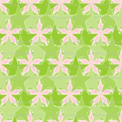 Star_Spots_-_Flower_Garden