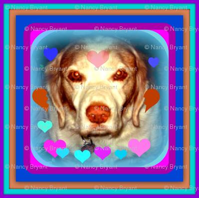 Kati dog-ed