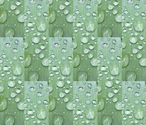 Raindrops  Keep Fallin'......on the Leaf! fabric by dovetail_designs on Spoonflower - custom fabric