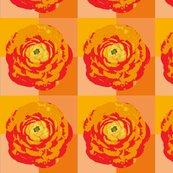 Rrose_with_orange_background-01_shop_thumb