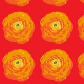 Rrrose_with_red_background-01_shop_thumb