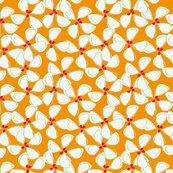 Rwhite_flowers_with_orange_background-01_shop_thumb