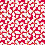 Rrwhite_flowers_with_red_background-01_shop_thumb