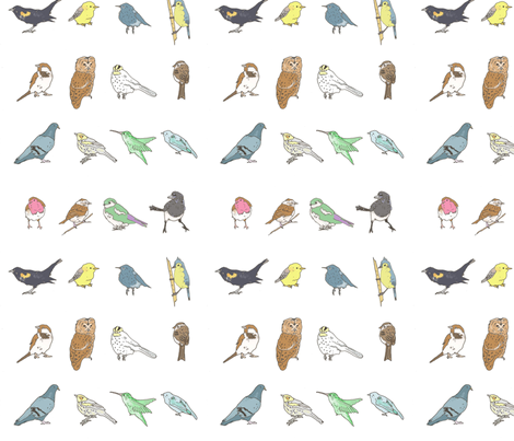 birdies sketch fabric by myracle on Spoonflower - custom fabric