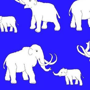 mammoths_...