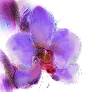 Afternoon Orchid Love  for Summer Pillow collection