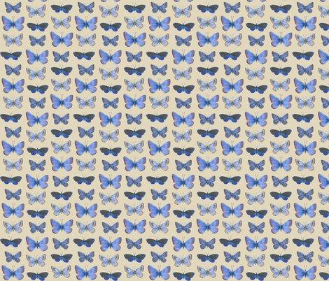 Rrrrrr0_butterflies3b_shop_preview