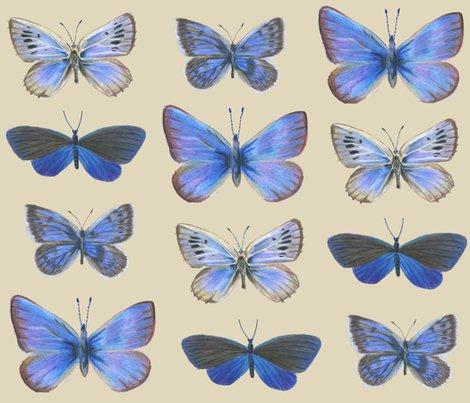 Rrrbutterflies3c_shop_preview