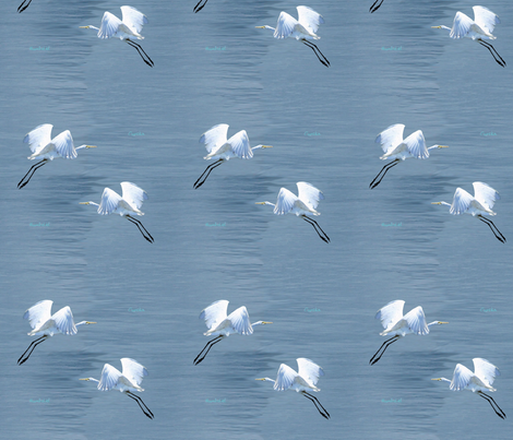 Eureka Egrets fabric by rima on Spoonflower - custom fabric