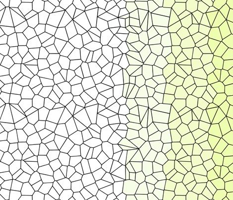Gradient Voronoi - Rescaled - Single Mirror- Amy Lee