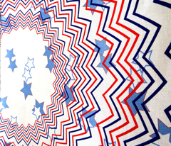Independance Day Skirt ZOOM FOR DETAIL