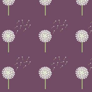 Big Dandelions