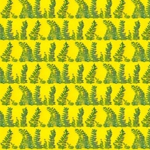 you_and_me_yellow_fern_150_dpi