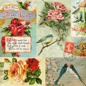Vintage Love Bird Postcard Collage