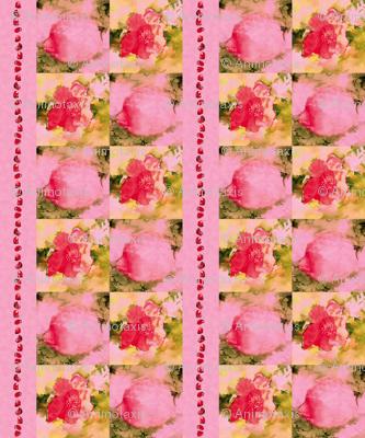 Pomegranate Flowers, Fruit, Seeds, L