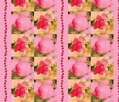 Rrrpomegranates_and_seeds_l_shop_preview