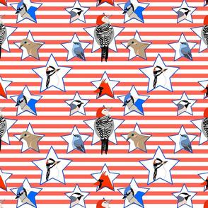 United Birds of America small version