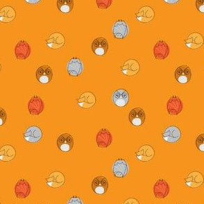 sleepy_nocturnal_dots_orange