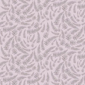 bracken_soft_grey