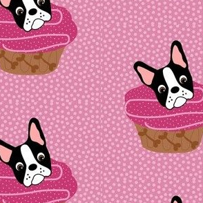 Boston Pupcake