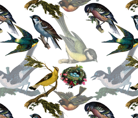 Birds Birds Birds fabric by victoriagolden on Spoonflower - custom fabric