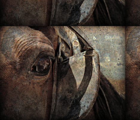 Horse Blinders fabric by angelandspot on Spoonflower - custom fabric