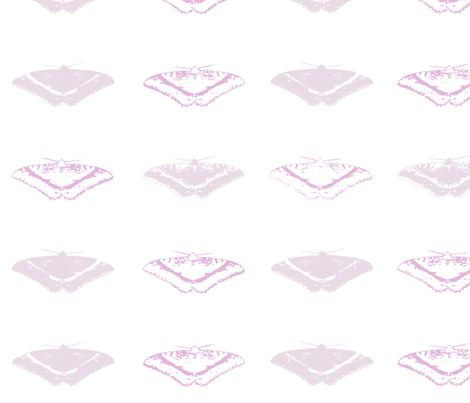 Moths - Lavender fabric by purplish on Spoonflower - custom fabric