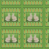 Rrabbit_panel_test_shop_thumb