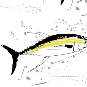 Yellowfin Tuna Grey Splash