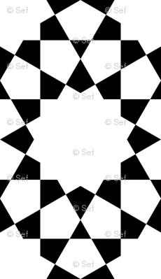 SC3X E3