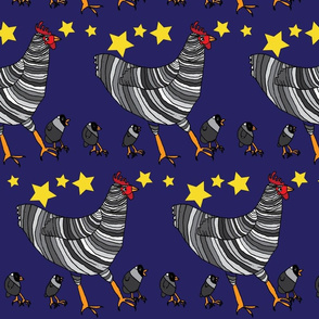 Barred Rock Chickens at Night