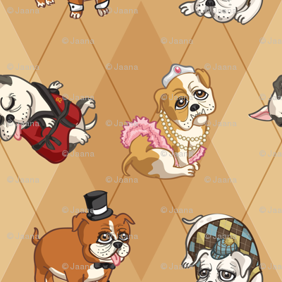Fancy English Bulldogs (Tan)