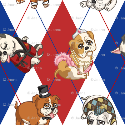 Fancy English Bulldogs (Patriotic)