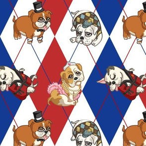 Fancy English Bulldogs (Patriotic)