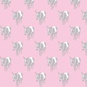 Donkeys Pink