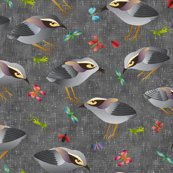 Rrrrrentry_gray_bush_wren_final_jpg_shop_thumb