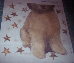 Rrrwheaten_puppy_with_stars_comment_191109_preview