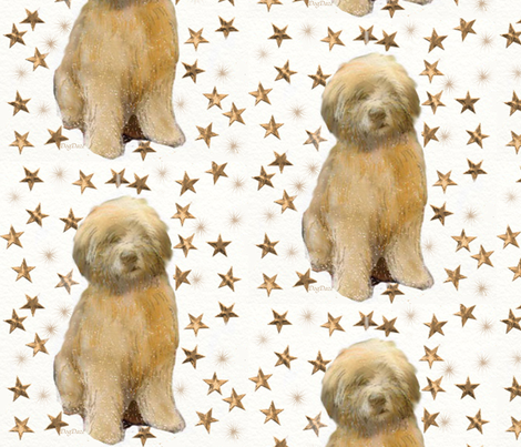 Soft Coated Wheaten Is a Star fabric by dogdaze_ on Spoonflower - custom fabric