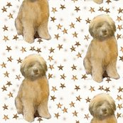Rrrwheaten_puppy_with_stars_shop_thumb