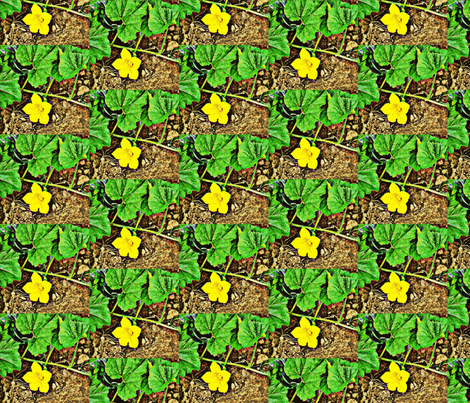 Squash Blossom fabric by anniedeb on Spoonflower - custom fabric