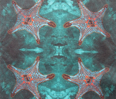 Rrrrstarfish_bg_done_for_stepping_comment_216300_thumb