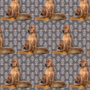 Redbone Coonhound dog fabric