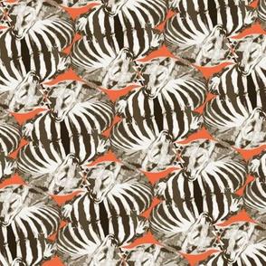 thylacine dreaming