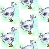 dodo-a-go-go