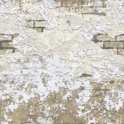 Grunge Plaster Brick Wall