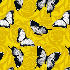 Small Gray Butterflies on Yellow