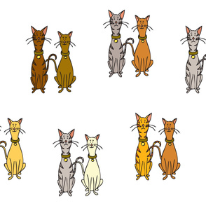 Handsome Cats - the lot
