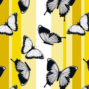Gray Butterflies on Yellow Stripes