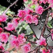 Rrrrpeach_blossoms_enhanced_ed_shop_thumb