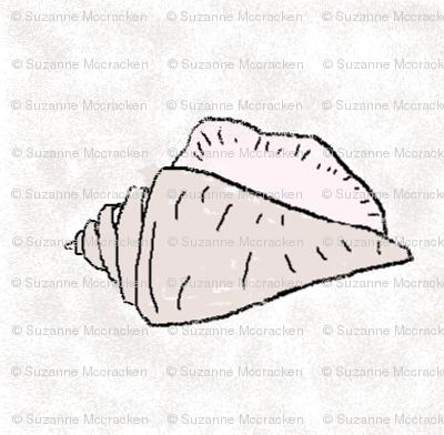 shell5-ed